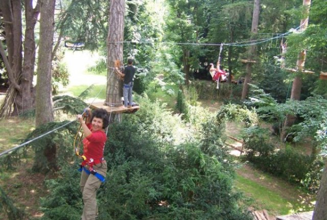 inauguration-art-en-arbres-147-1024x768