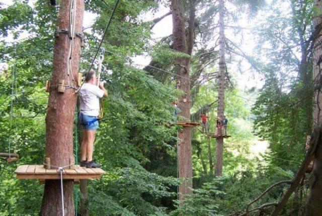 inauguration-art-en-arbres